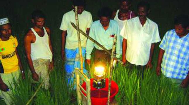 গ্রামীন কৃষিতে 'আলোক ফাঁদ'