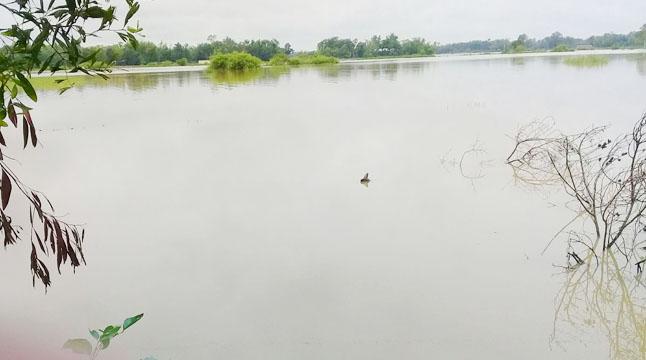 কমলগঞ্জে নিম্নাঞ্চল প্লাবিত