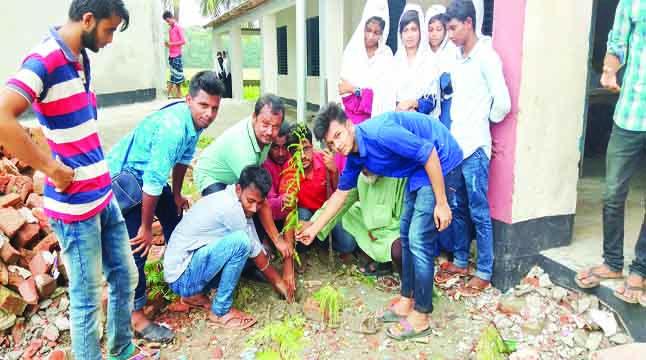 রাঙ্গাবালীতে বৃক্ষরোপণ