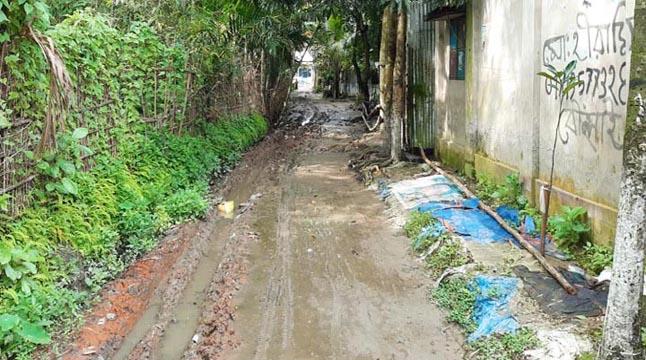 কিশোরগঞ্জে টিআর-কাবিখা প্রকল্পে হরিলুট
