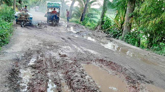 বড়াইগ্রাম-জোনাইল সড়ক বেহাল