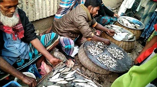 আত্রাই বাজারে দেশি মাছ