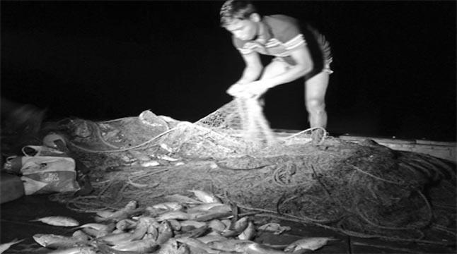 নিষেধাজ্ঞা অমান্য করে ইলিশ শিকার