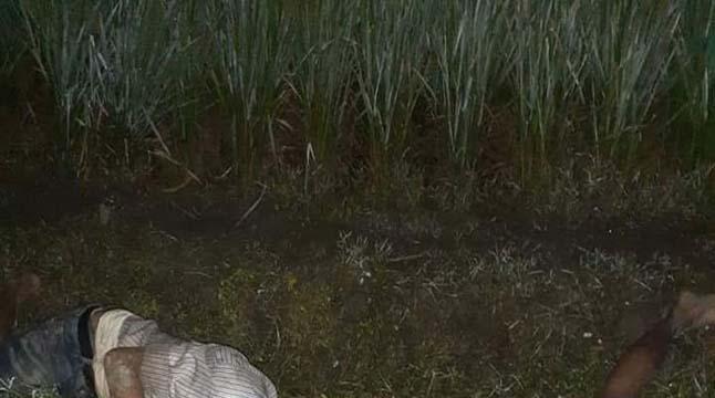 ইঁদুর মারার ফাঁদে পড়ে ২ জন নিহত