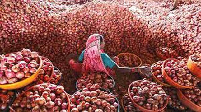 মালদ্বীপকে পেঁয়াজ দিচ্ছে ভারত