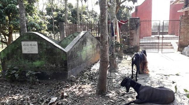 দুর্গাপুরে অবহেলিত গণকবর