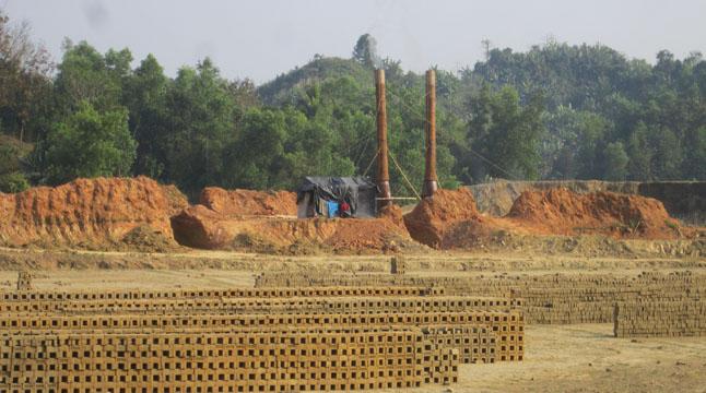 বনাঞ্চলের ভেতরে ইটভাটা হুমকিতে জীববৈচিত্র্য