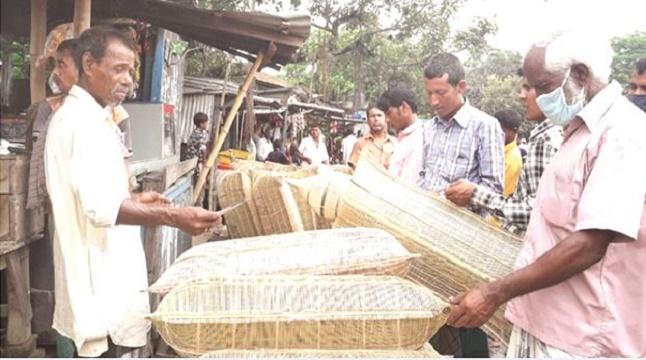 দিনাজপুরে মাছ ধরার ধুম