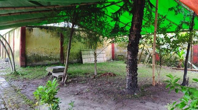 ক্রিসমাস ট্রির নিচে চিরনিদ্রায় শায়িত হবেন এন্ড্রু কিশোর