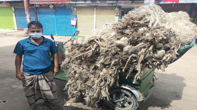 কটিয়াদীতে পাটের বাজার চড়া, কৃষকের মুখে হাসির ঝিলিক