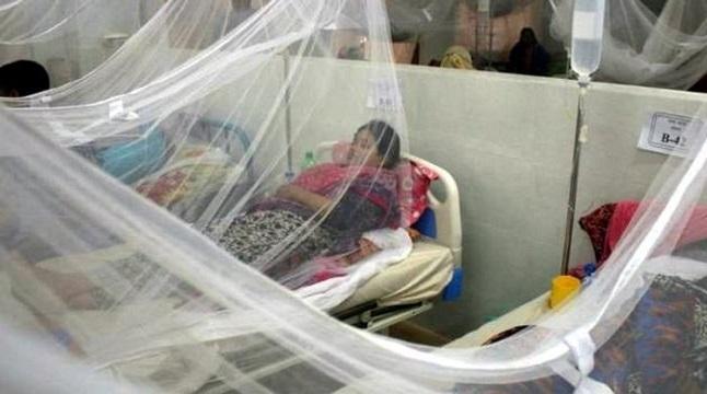 ডেঙ্গু আক্রান্ত হয়ে আরও ৩০৭ জন হাসপাতালে